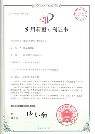 黑龙江省王者荣耀体育文化发展有限公司